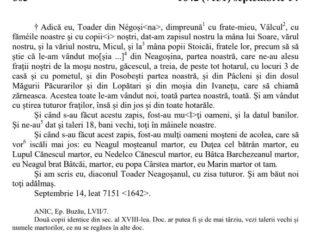 Negoșina, 1642